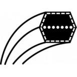 Pasek klinowy ECHO - OREGON